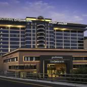 迪拜德伊勒市中心鉑爾曼酒店
