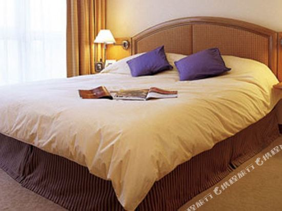 香港嘉湖海逸酒店(Harbour Plaza Resort City)標準房