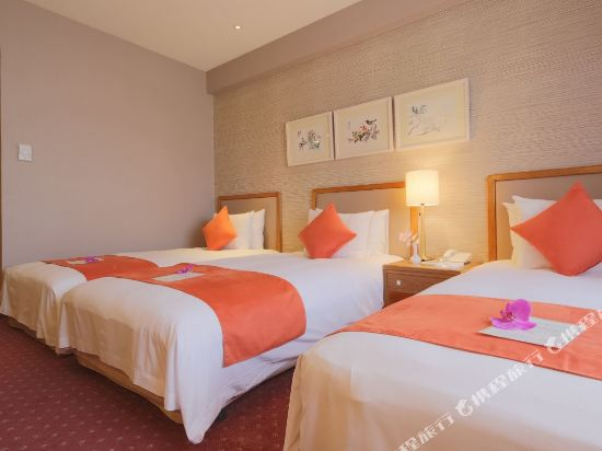 台北豪景大酒店(Hotel Riverview Taipei)特斯拉標準三人房