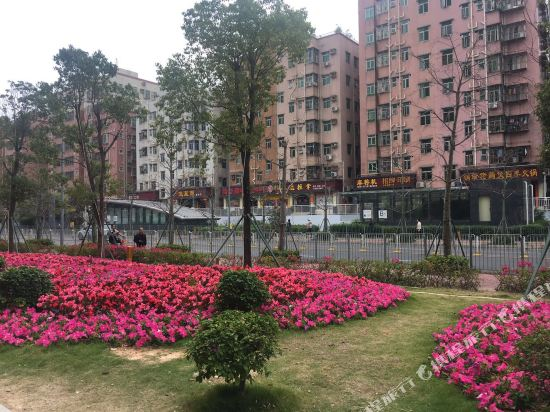 深圳皇軒酒店(Asta Hotels & Resorts Shenzhen)豪華大床房