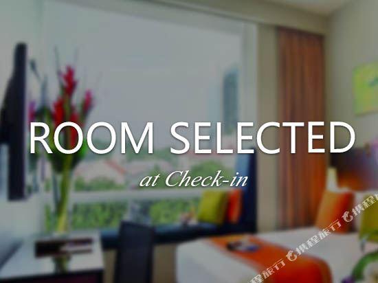 新加坡柏偉詩酒店(Park Regis Singapore)入住時指定房型