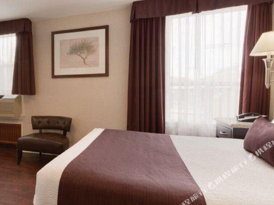 温德姆華麥德龍戴斯酒店(Days Inn by Wyndham Vancouver Metro)單卧室大床套房