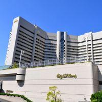 大阪新大谷酒店酒店預訂