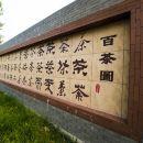 沂水蒙山龍霧茶文化主題賓館