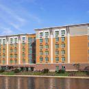 邁阿密機場 - 藍礁湖坎布里亞套房酒店(Cambria Hotel & Suites Miami Airport - Blue Lagoon)