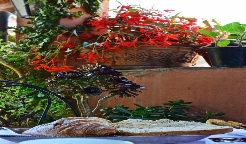 La Terrazza dei Pelargoni B&B, Hotel reviews, Room rates and Booking