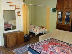 福蘭德林森林公寓(Frendlen Metsa Apartment)