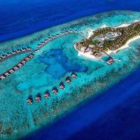 馬爾代夫卓美亞維塔薇麗度假村酒店預訂