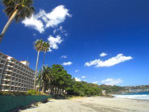 伊豆今井濱東急酒店(Izu-Imaihama Tokyu Hotel)
