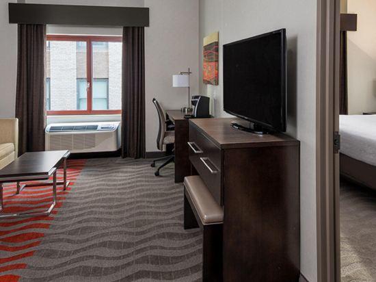 紐約曼哈頓金融區假日酒店(Holiday Inn Manhattan Financial District New York)行政套房