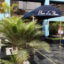 拉斯弗洛雷斯廣場套房公寓(Suites Plaza Las Flores)