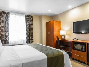 聖何塞品質酒店/硅谷(Quality Inn San Jose / Silicon Valley)