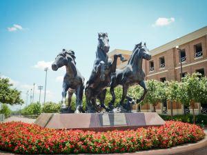 白玉蘭酒店 達拉斯城市公園(Magnolia Hotel Dallas Park Cities)