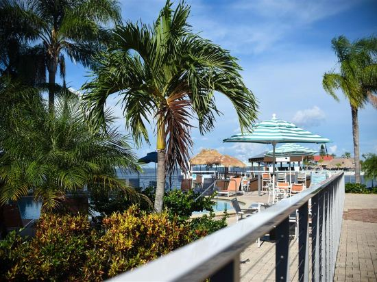 Hotels In Tampa >> Tampa Hotels Where To Stay In Tampa Trip Com