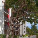硅谷聖克拉拉阿凡達酒店(Avatar Hotel Santa Clara)