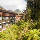 沃諾森林公寓酒店(Te Waonui Forest Retreat)