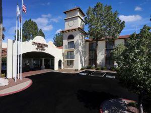 圖森機場套房酒店(DoubleTree Suites by Hilton Tucson Airport)
