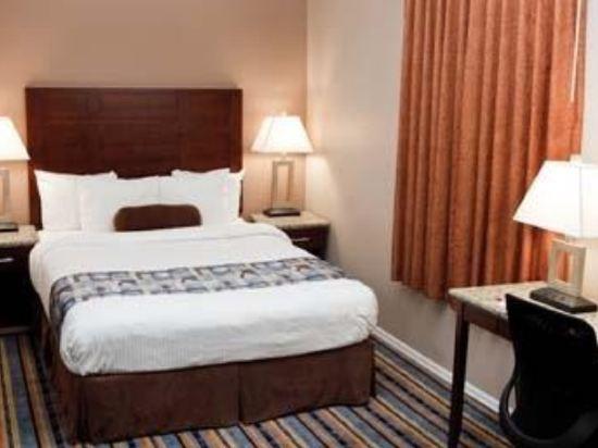 華美達温德姆華市中心酒店(Ramada Vancouver Downtown)大床房