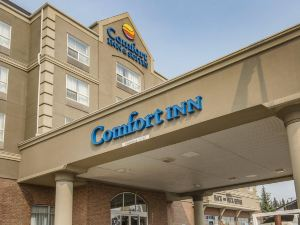 南部舒適酒店&套房(Comfort Inn & Suites South)