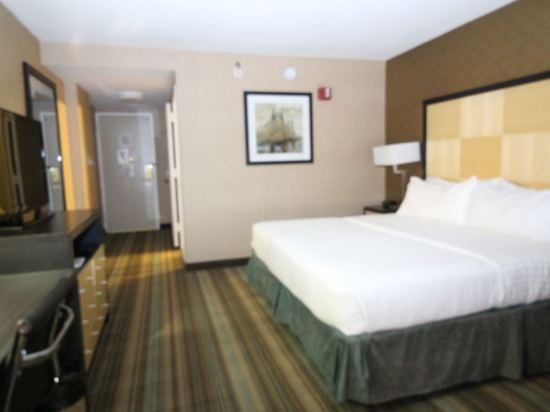 紐約沃森酒店(原紐約曼哈頓第57街假日酒店)(The Watson Hotel (Formerly Holiday Inn Manhattan 57th Street))特大床房
