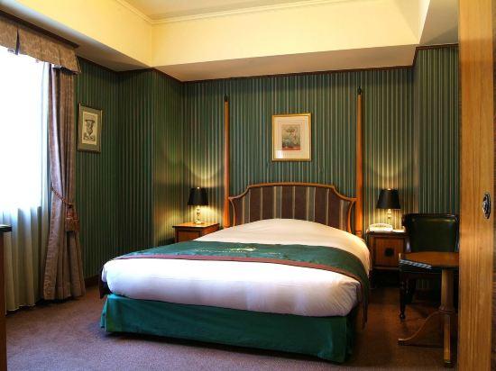 札幌蒙特利酒店(Hotel Monterey Sapporo)小型雙人房
