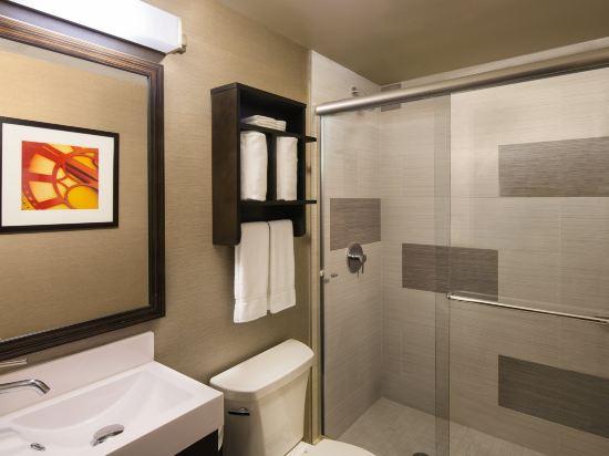 紐約曼哈頓金融區假日酒店(Holiday Inn Manhattan Financial District New York)豪華房