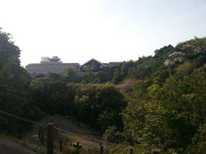 鯨白濱賓館(Grampus Inn Shirahama)
