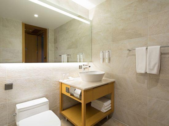 喜普樂吉酒店首爾東大門(Sotetsu Hotels the Splaisir Seoul Dongdaemun)高級大床房