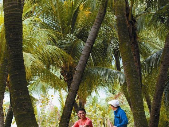 新加坡香格里拉聖淘沙度假酒店(Shangri-La's Rasa Sentosa Resort & Spa)其他