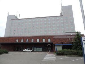 千歲市特雷斯大酒店(Hotel Grand Terrace Chitose)