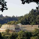 弗萊堡美爵全景酒店(Mercure Hotel Panorama Freiburg)