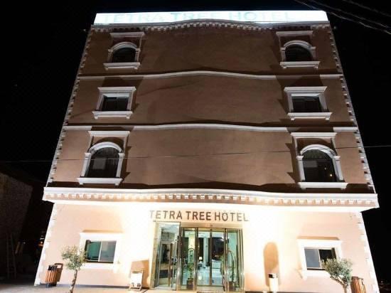fama Cámara Planta de semillero  Tetra Tree Hotel - Reviews for 3-Star Hotels in Petra   Trip.com