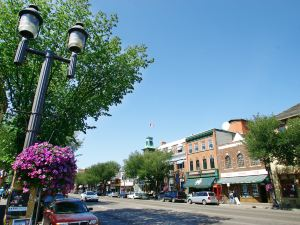南埃德蒙頓旅客之家酒店(Travelodge Edmonton South)