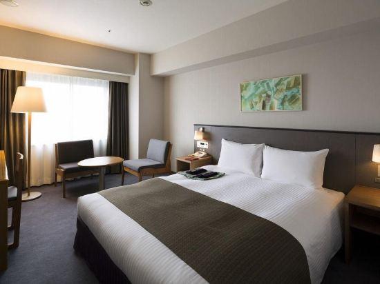 京都蘭威特酒店(Aranvert Hotel Kyoto)豪華雙人房