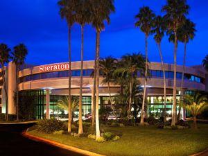 坦帕布蘭登喜來登酒店(Sheraton Tampa Brandon Hotel)