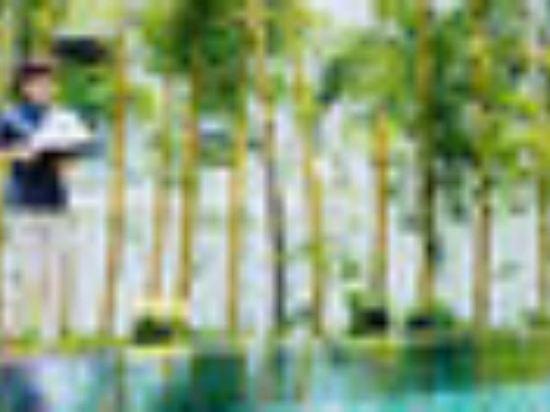 峴港雅高尊貴度假村(Premier Village Danang Resort Managed by AccorHotels)SPA