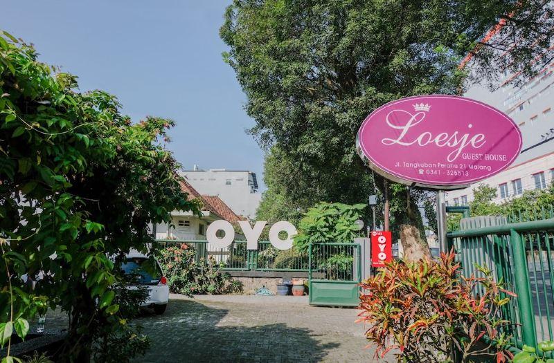 Loesje Guest House Reviews For 0 Star Hotels In Klojen Trip Com