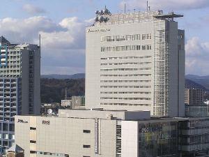 岡山全日空皇冠假日酒店(Ana Crowne Plaza Okayama)