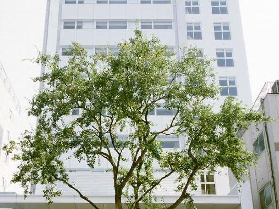 福岡天神UNIZO酒店(HOTEL UNIZO Fukuoka Tenjin)周邊圖片