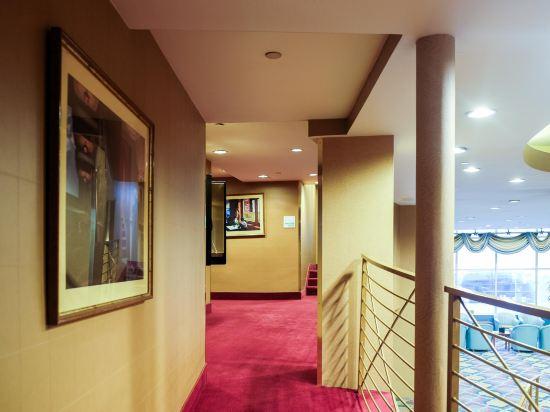 紐約沃森酒店(原紐約曼哈頓第57街假日酒店)(The Watson Hotel (Formerly Holiday Inn Manhattan 57th Street))公共區域