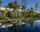 熱帶叢林精品酒店