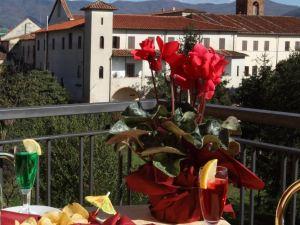 皮可羅麗茲酒店(Hotel Piccolo Ritz)