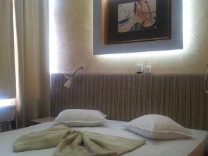 阿拉賓中心酒店(Hotel Alabin Central)