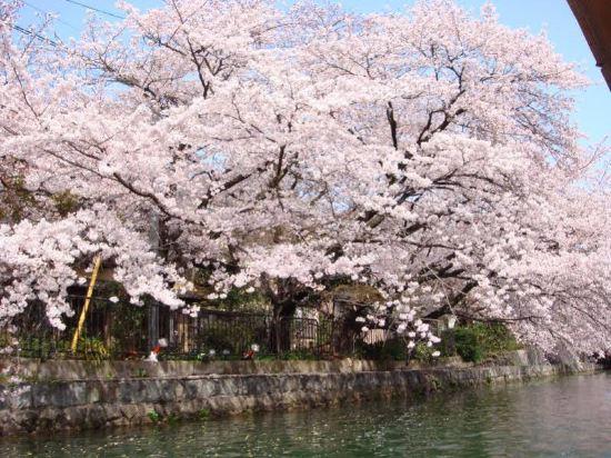 the b 京都三條酒店(The b Kyoto Sanjo)其他