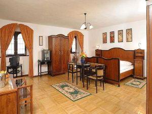 茲拉季安德爾酒店(Hotel Zlaty Andel)