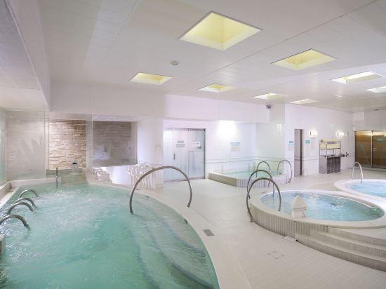 札幌艾米西亞酒店(Hotel Emisia Sapporo)室內游泳池