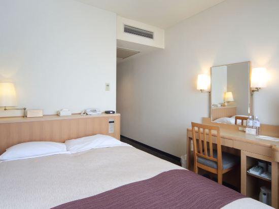 東京灣有明華盛頓酒店(Tokyo Bay Ariake Washington Hotel)小型雙人房