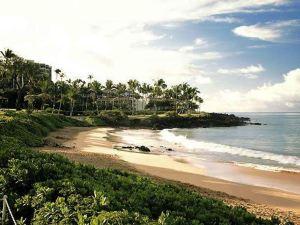 夏威夷威利亞海灘萬豪度假酒店(Wailea Beach Marriott Resort & Spa)
