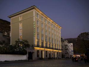 特爾米努斯大酒店