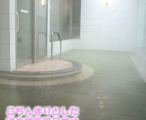 札幌王子酒店(Sapporo Prince Hotel)健身娛樂設施